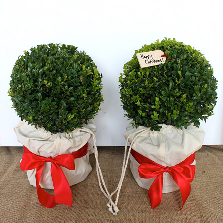 Christmas Topiary Balls.Best Christmas Decorations With Fake Hedges And Topiary
