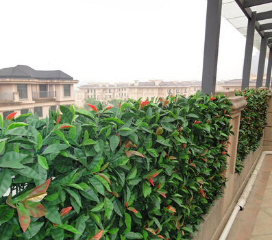 Artificial-hedges-for-balcony-privacy