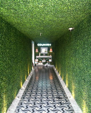 artificial-hedging-for-interior-wall-decor