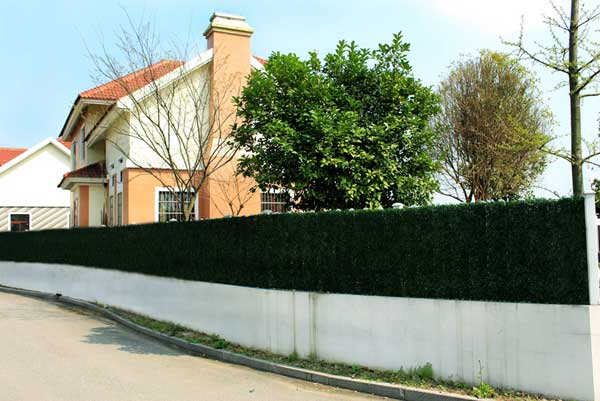 artificial-boxwood-hedges-panel