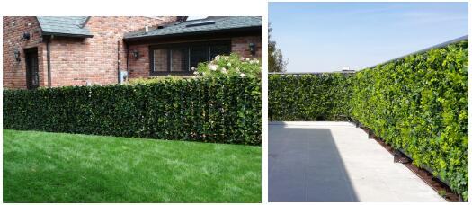 artificial hedge privacy screen for yard fence covering