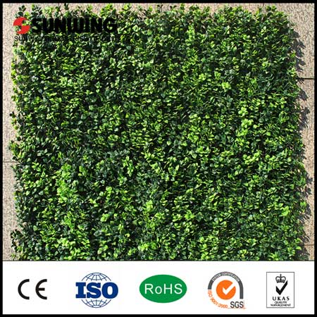 Latest New Artificial Hedges is ready for sale