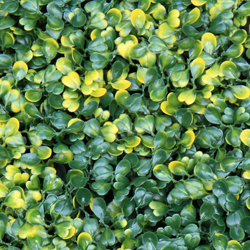 Artificial Landscape Leaves Hedge A001 Yellow