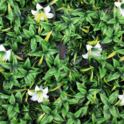 Artificial Landscape Leaves Hedge A037