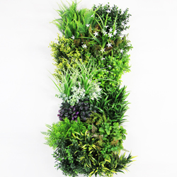 Wall Plants frame wild Green