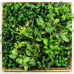 Artificial Plants Frame Wall F001