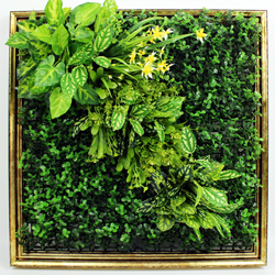 Artificial Plants Frame Wall F003