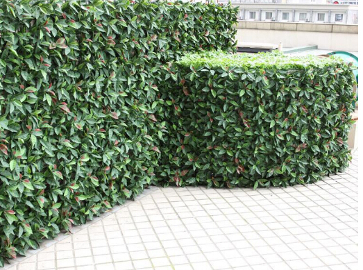 Artificial-hedges-for-plant-screen-and-decor10