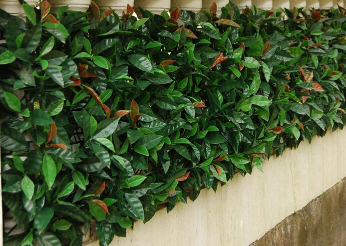 Artificial-hedges-for-plant-screen-and-decor9