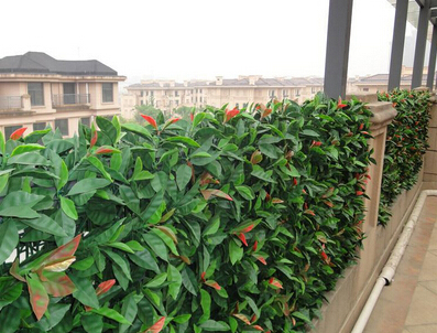 Artificial hedges for privacy protection and decor in balcony1